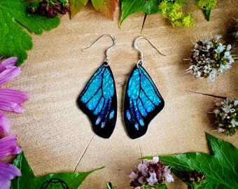 Turquoise butterfly wing earrings. Handmade, cruelty free, realistic iridescent butterfly wings. Faux taxidermy jewellery.