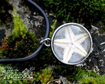 Starfish rock pool necklace, botanical glass terrarium necklace. Beach style, boho, hippy unisex pendant