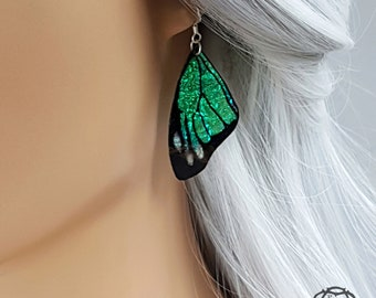 Green butterfly wing earrings. Handmade cruelty free iridescent butterfly wings. Faux taxidermy jewellery on a choice of earwires.