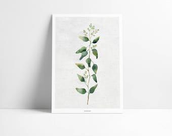 Poster / plant No.. 2