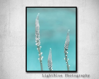 Teal Print Printable Nature Botanical Art Print Teal Flower Photography Digital Print Printable art Modern Art Teal Aqua Blue decor