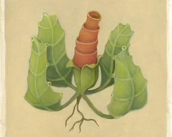 Tube Rose (Original Oil Sketch)