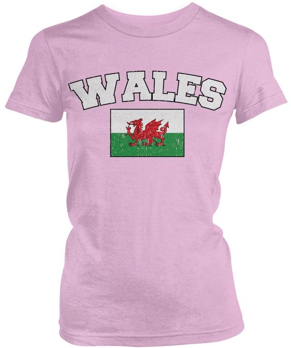 Amdesco Wales Flag Welsh Toddler Raglan Shirt