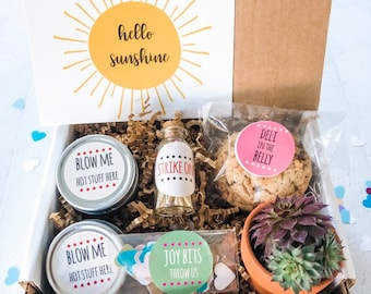 Live Succulent Plants Edible Birthday Gift Boxes Hello Sunshine Box Basket For Mom Food Candles Thinking Of You