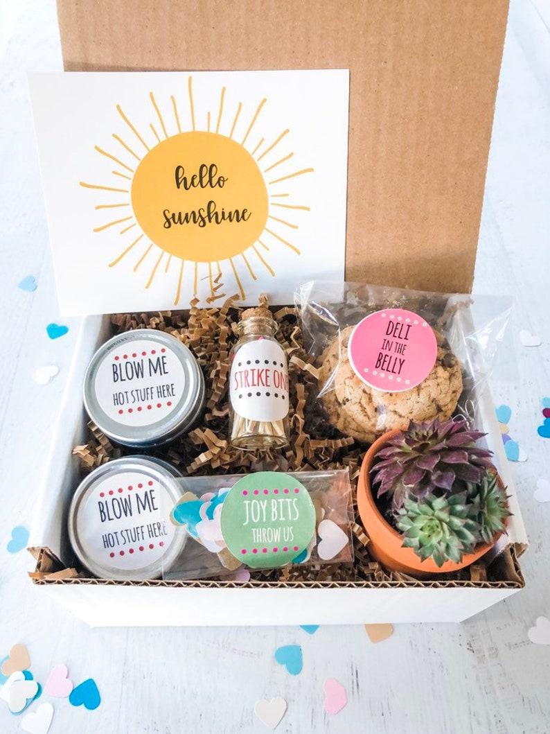 Live Succulent Plants Edible Birthday Gift Boxes Hello