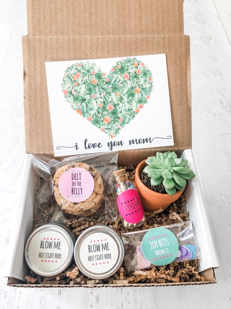 Live Succulent Gift For Mother S On Day 1st From Baby For Etsy