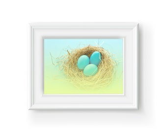 Birds Nest with Eggs, Nature, Printable Art, Wall Art, Home Decor, Summer, Spring, nest, Robins Eggs, Easter, Blue, Yellow