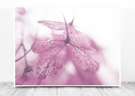 Lovely Digital Photography (Soft Pink/Baby Pink Decor) for Instant Download