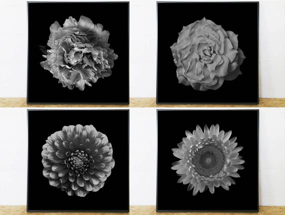 Set of 4 Prints Black and White (Square Art Print Photography Set) for Instant Download