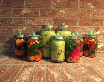 5 pack! Waterless Airlock for wide mouth mason jar lacto fermenting