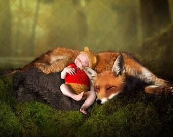 2 Newborn Digital backdrops / backgrounds / fox / fox cub /  Instant download
