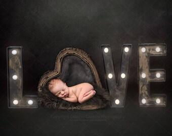 Newborn Valentines digital backdrop / background / heart basket / love sign / Valentine's