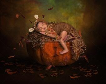 2 Newborn Digital backdrops / backgrounds / Halloween / Autumn / Fall / real pumpkin / Instant download
