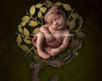 Newborn Digital backdrop / background / Tree of life / family tree