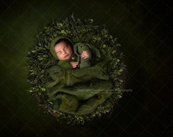 Newborn Digital backdrop / background / moss / boxwood / nest