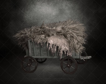 2 Newborn Digital backdrops / backgrounds / vintage cart / girl or boy