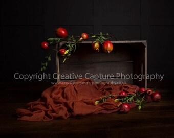 2 Newborn Digital backdrops / backgrounds /Autumn colours / cox apple crate / apples