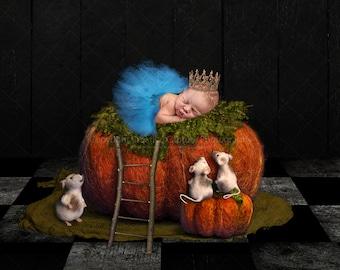 2 Digital backdrops / backgrounds / pumpkin / Cinderella / Princess / Halloween / fairytale / fantasy / newborn / Instant download