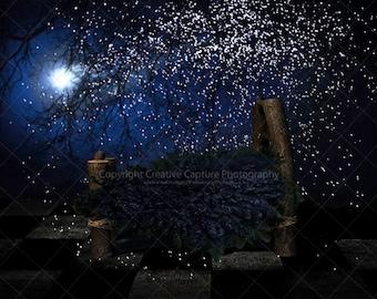Newborn digital backdrop / background / stars & sky / fairytale  / fantasy / newborn / toddler