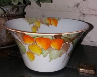 Shelley Cape Gooseberry slop/sugar bowl. Pattern 12299.
