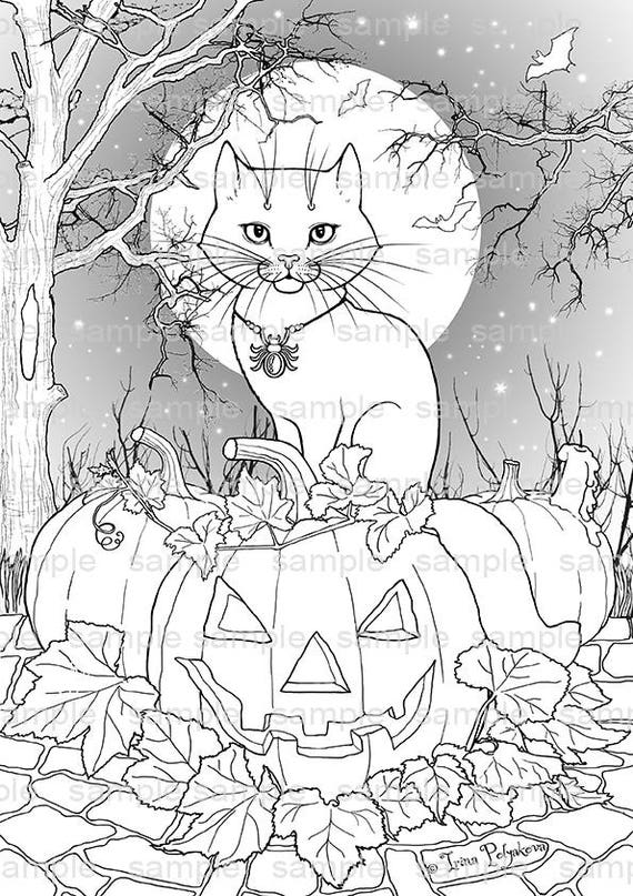 Halloween Decor Party Activity Adult Coloring Page Cat Kids Book Illustration Pumpkin Pages Art Therapy