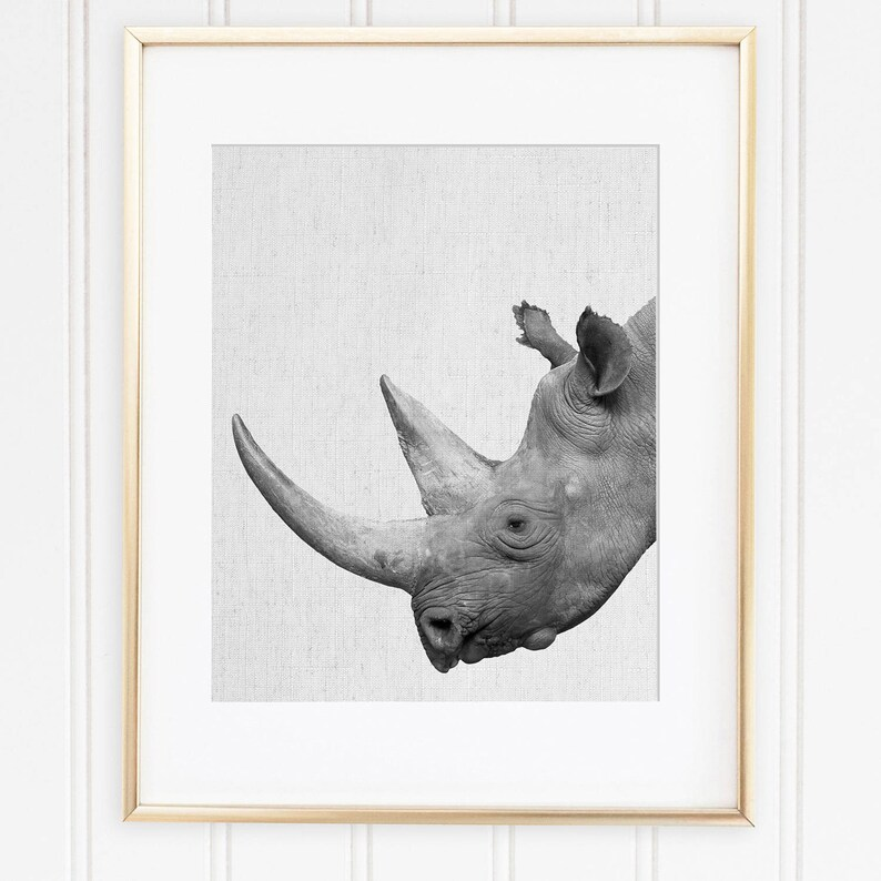 photograph regarding Rhino Printable identify Rhino Print, Rhino Artwork, Rhinoceros Print, Rhino Printable, African Animal, Scandinavian Progressive, Black And White Animal, Safari Concept Decor