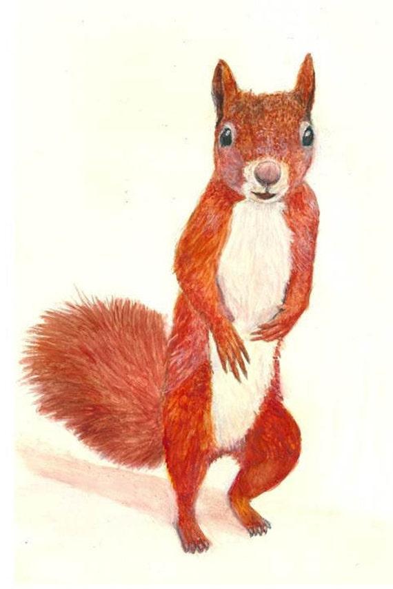 Niedliche Eichhörnchen Print. Eichhörnchen Aquarell Portrait.   Etsy