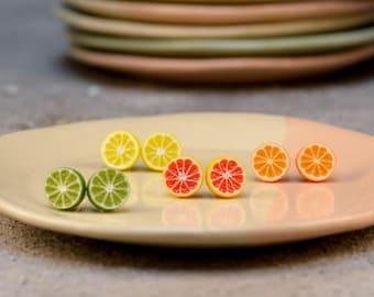 Citrus Stud Earrings, Titanium Earrings, Food Jewelry, Polymer Clay Orange, Lemon, Grapefruit, Lime, Miniature Fruits, Fruit Earrings