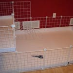 """2x4 bottom 2x1 top CC Guinea Pig Cage 14""""x14"""" Wire Grid Panel Cage with Corrugated Plastic Rabbit Hedgehog 4 Panels Long 2 Panels Wide"""