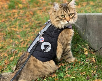 Reflective High visibility harness for Cat. Difficult to escape. Safety Vest with 2 reflective patches. Autumn Fall Winter | ALLCATSGOOD
