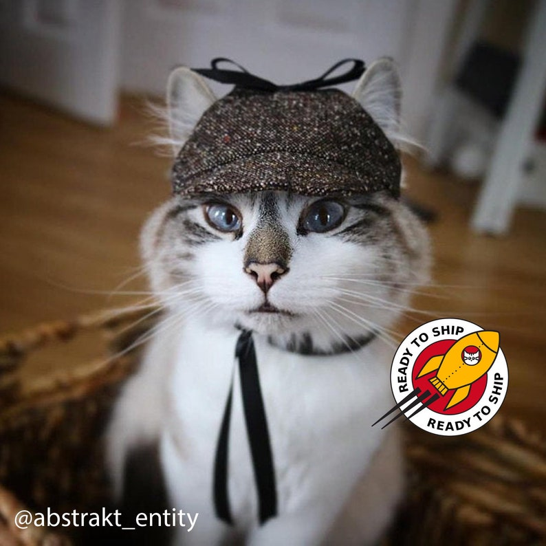 Ready to ship. Halloween Classic Cat Hat. Cap for Cats and image 1