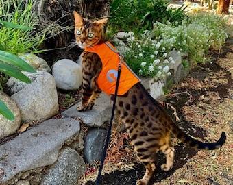 Neon orange High visibility Warm Cat harness with reflective elements. kitten vest. Autumn Fall Winter | ALLCATSGOOD