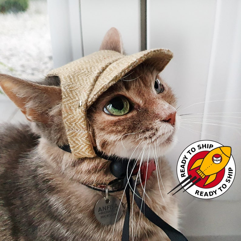 Ready to ship.  Classic Cat Hat. Cap for Cats and Kittens. image 1