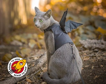 Ready to ship. Dracula / Dragon / Bat Cat Harness With Removable Wings. Escape Proof. Handmade Vest. Halloween Party. ALLCATSGOOD