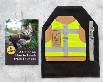 Starter kit for cat. Cotton High Visibility Neon Yellow harness with reflective stripes and 6 feet leash.  Difficult to escape