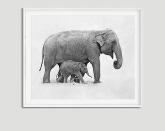 Baby elephant print • Elephant wall art Baby animal art Elephant printable Elephant decor Elephant poster Elephant baby room Safari art
