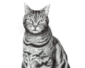 "Limited Edition Print | ""Ollie"" | Fine art print from my original artwork"