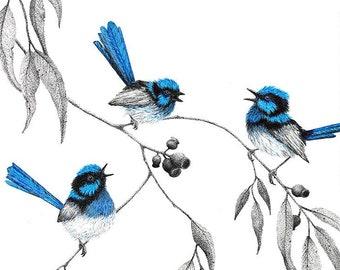 "Open Edition Print | ""Blues Wrendition"" | Fine art print from my original artwork"