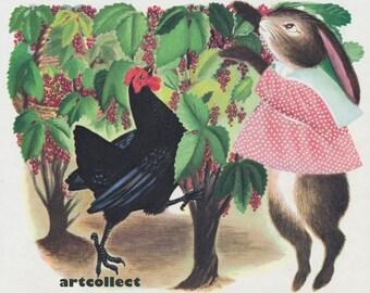 Vintage Image: Chicken & Rabbit Picking Berries