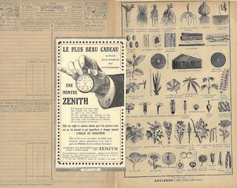 Aged French ephemera papers, cute brown vintage pages, vintage ephemera paper pack