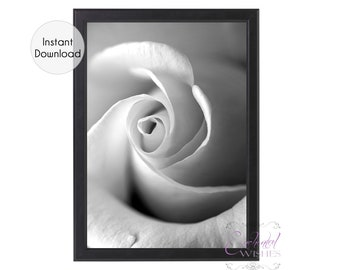 Black Rose Print Etsy