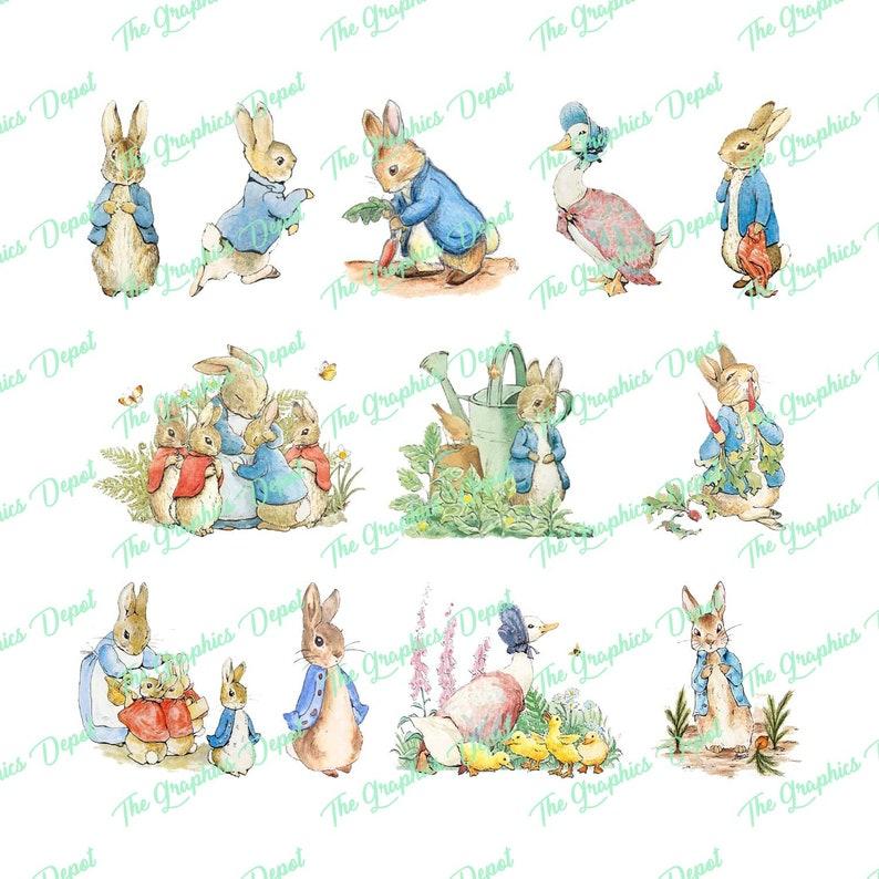 86347c45648 Peter Rabbit 12 PNG files Set 1 Clipart Clip Art | Etsy