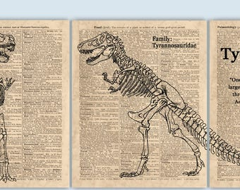 Tyrannosaurus Triptych, Dinosaur Art, Dinosaur Party Decor, Dinosaur Print, Kids Room Decor, T Rex Print, Dinosaur Decor, Dinosaur Poster