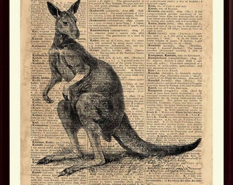 Kangaroo Print, Animal Artwork, Nursery Decor, Kangaroo Poster, Kids Playroom, Educational Posters, Animal Wall Decor, Australian Art