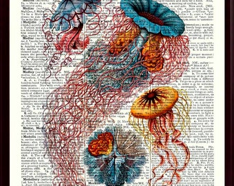 Jellyfish Print, Jellyfish Art, Beach House Decor, Jellyfish Poster, Nautical Wall Art, Sea Life Print, Nautical Decor, Ocean Decor