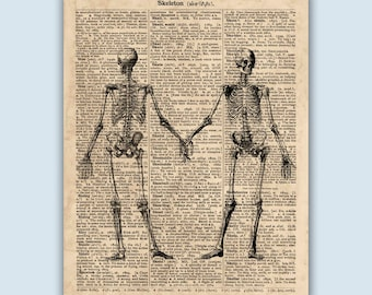 Skeleton Poster, Skeleton Art Print, Anatomy Print, Human Skeleton Print, Anatomical Poster, Anatomy Art