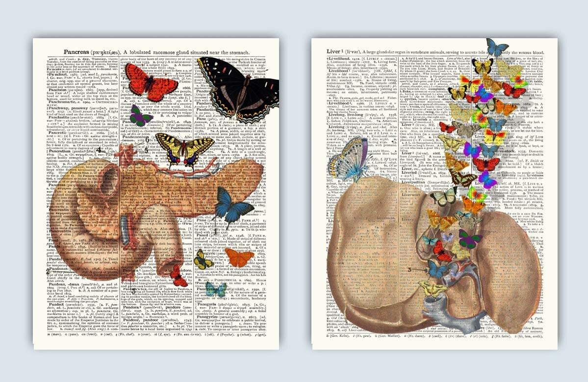 Pankreas Leber Schmetterlinge Fantasy-Anatomie-Kunst | Etsy