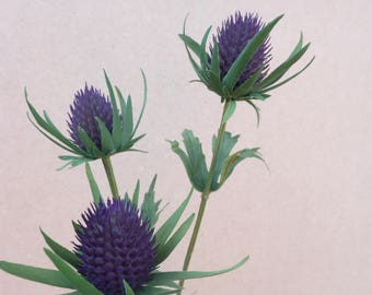 Artificial thistle purple teasel cone flower ideal for bouquets, wild flower displays, buttonholes, cake  decorating and wedding corsages.