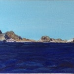 Farallons: South East Farallon Island *Reserved for Jane