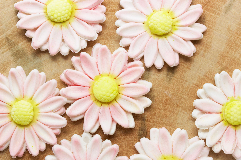 Edible Fondant Daisy Flowers Cupcake Flowers Cake Etsy